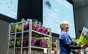 Optimise floriculture and make it more sustainable with AI algorithms
